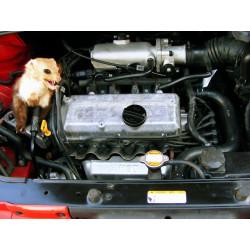 Repelente ultrasónico Ratones Martens Roedores Capota para vehículos de motor 12V DC