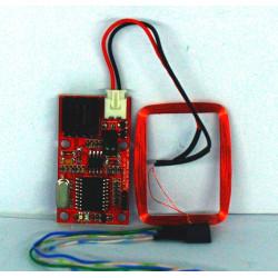 Lettore RFID Arduino EM4100 125KHz RS232 e Wiegand W26 antenna