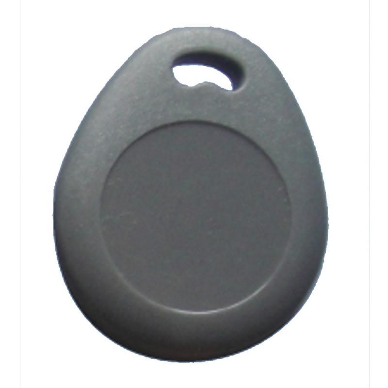 1 Tag portachiavi RFID 125kHZ riscrivibile KF29 chip T5577 - Grigio