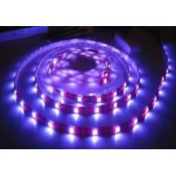 Rouleau 5 mètres bande LED adhésive smd 5050 tri-puce IP65 BLEU 12V DC