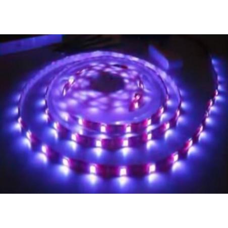 Rullo 5 metri striscia LED adesiva smd 5050 tri-chip IP65 BLU 12V DC